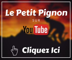 Chaine Youtube Le Petit Pignon